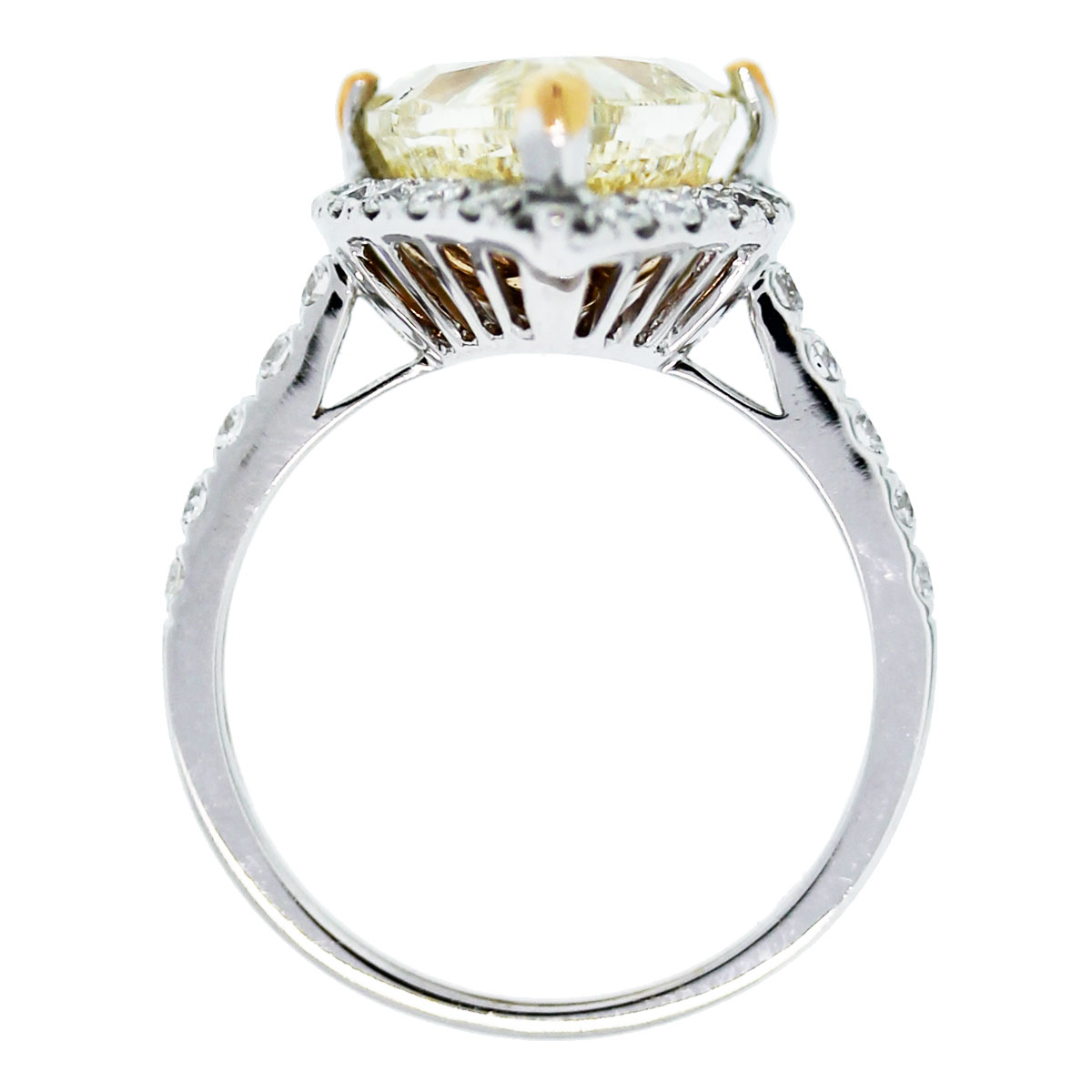This 18k White Gold Pear Shape Fancy Yellow Diamond Halo Engagement Ring is beautiful