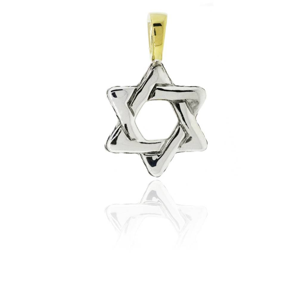 ff395feebbe1 David Yurman Star of David Cable Pendant - Raymond Lee Jewelers
