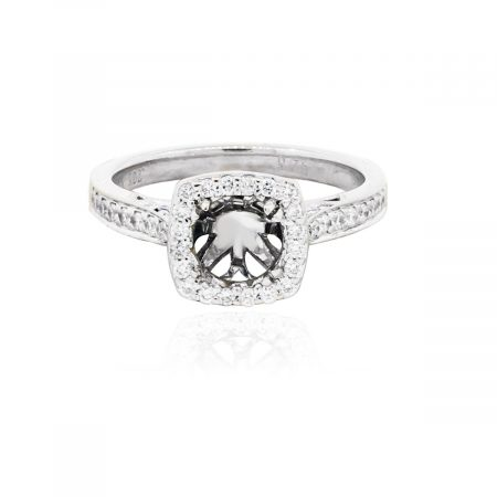You are viewing this 18k White Gold .34ctw Diamond Halo Mounting!