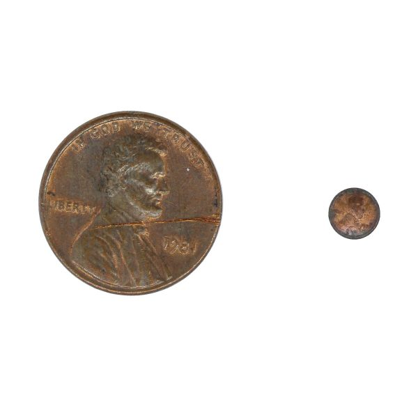 Small penny compared to life sized penny